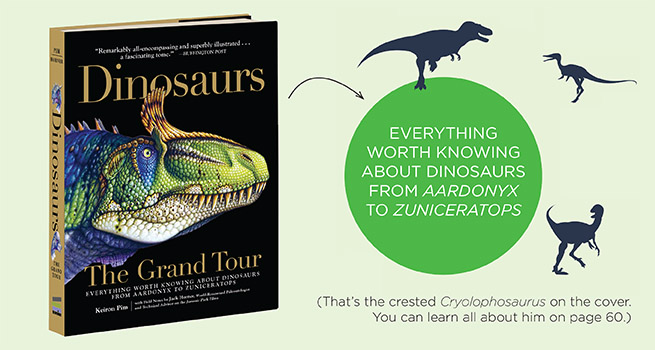 Dinosaurs.banner
