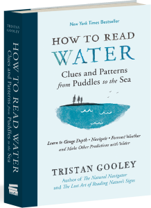 how-to-read-water_3d